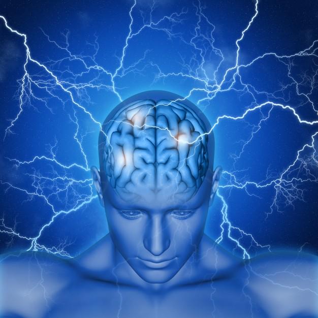 human-brain-with-rays_1048-4743